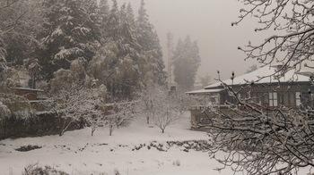 2017-3-11 Snow03.jpg