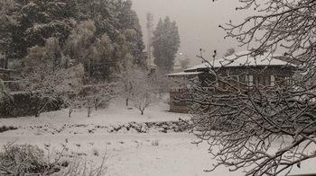 2017-3-11 Snow04.jpg