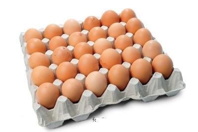 2016-12-13 Eggs.jpg