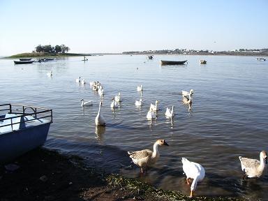 Bhopal2.JPG